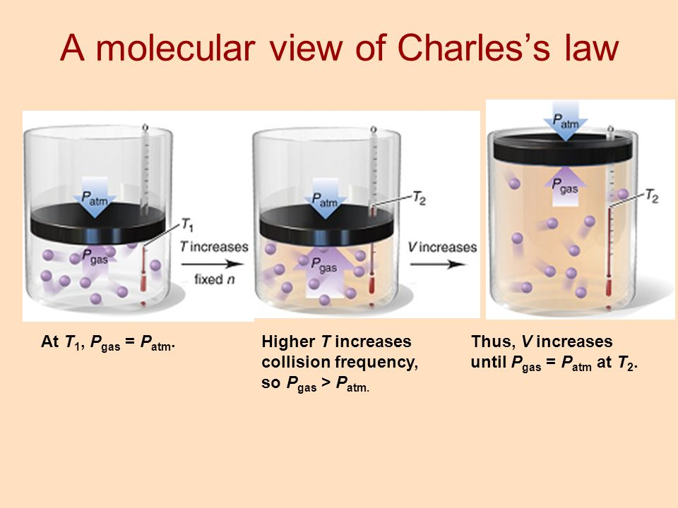 A molecular view of Charles's law
