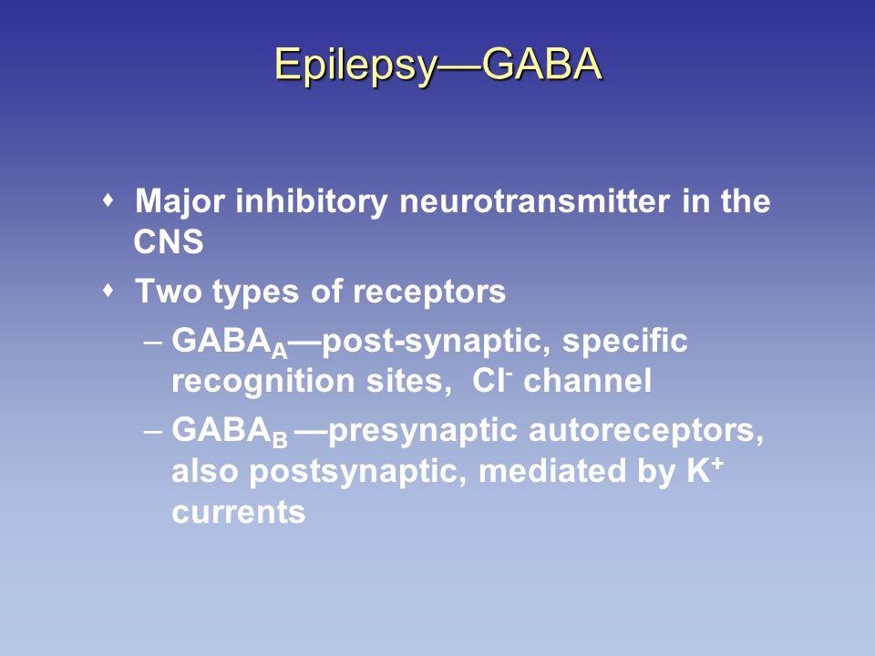 Epilepsy—GABA  Major inhibitory neurotransmitter in the CNS
