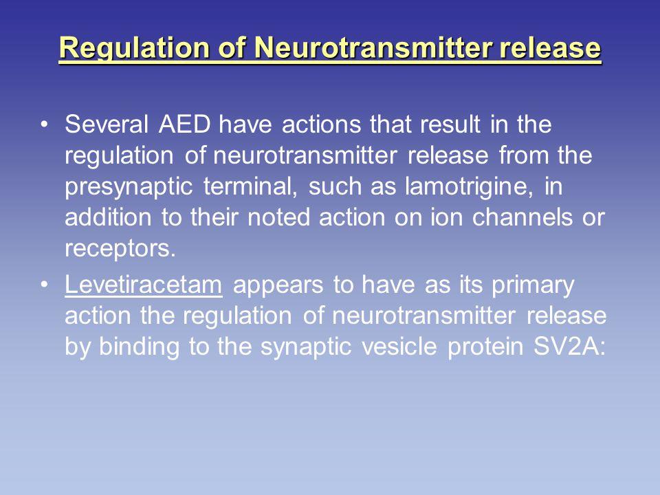 Regulation of Neurotransmitter release