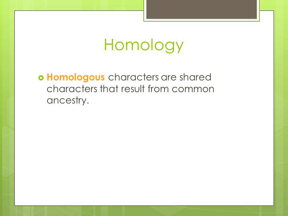 Homology Homologous characters are shared characters that result from common ancestry.