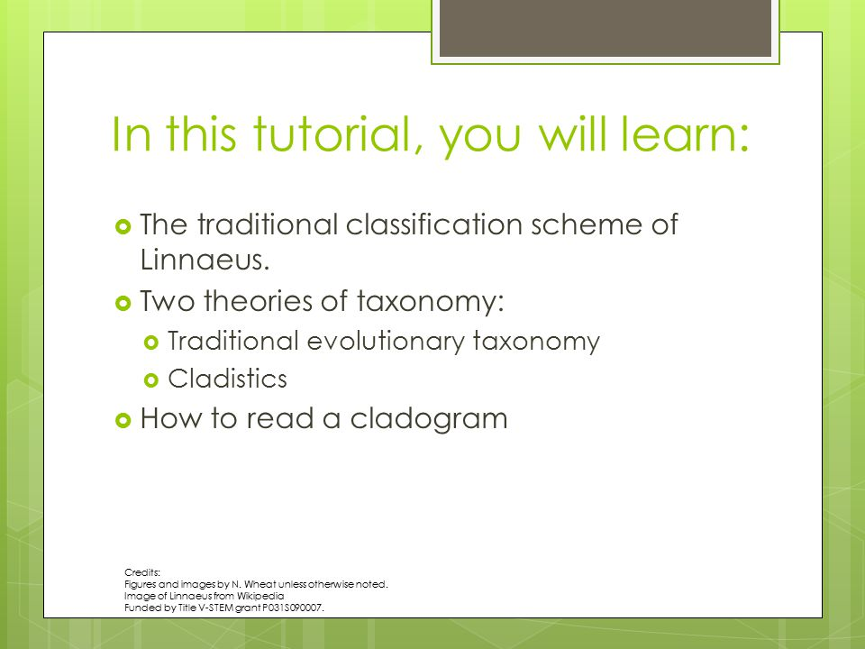 In this tutorial, you will learn: