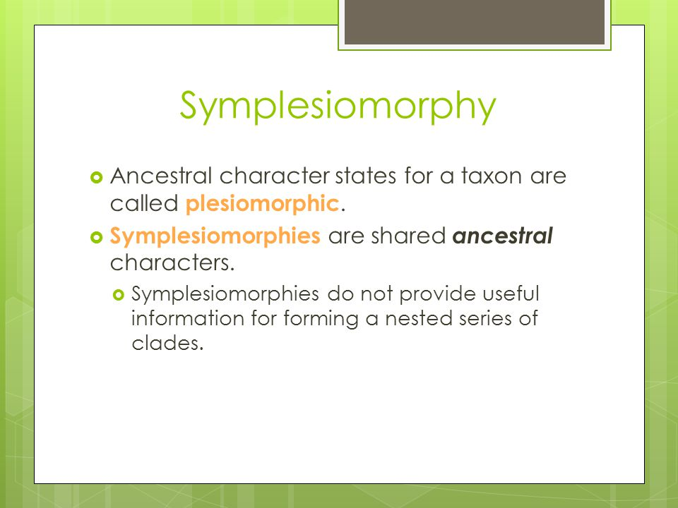 Symplesiomorphy Ancestral character states for a taxon are called plesiomorphic. Symplesiomorphies are shared ancestral characters.