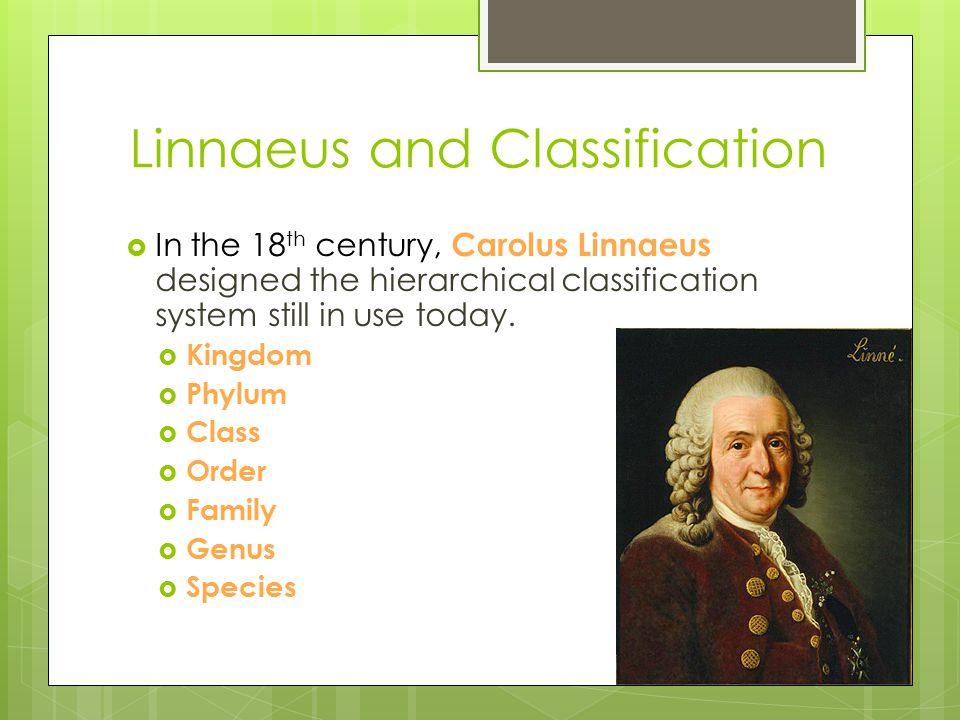 Linnaeus and Classification