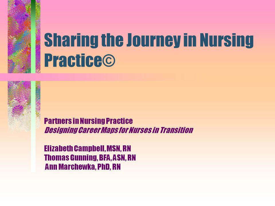 Sharing the Journey in Nursing Practice©