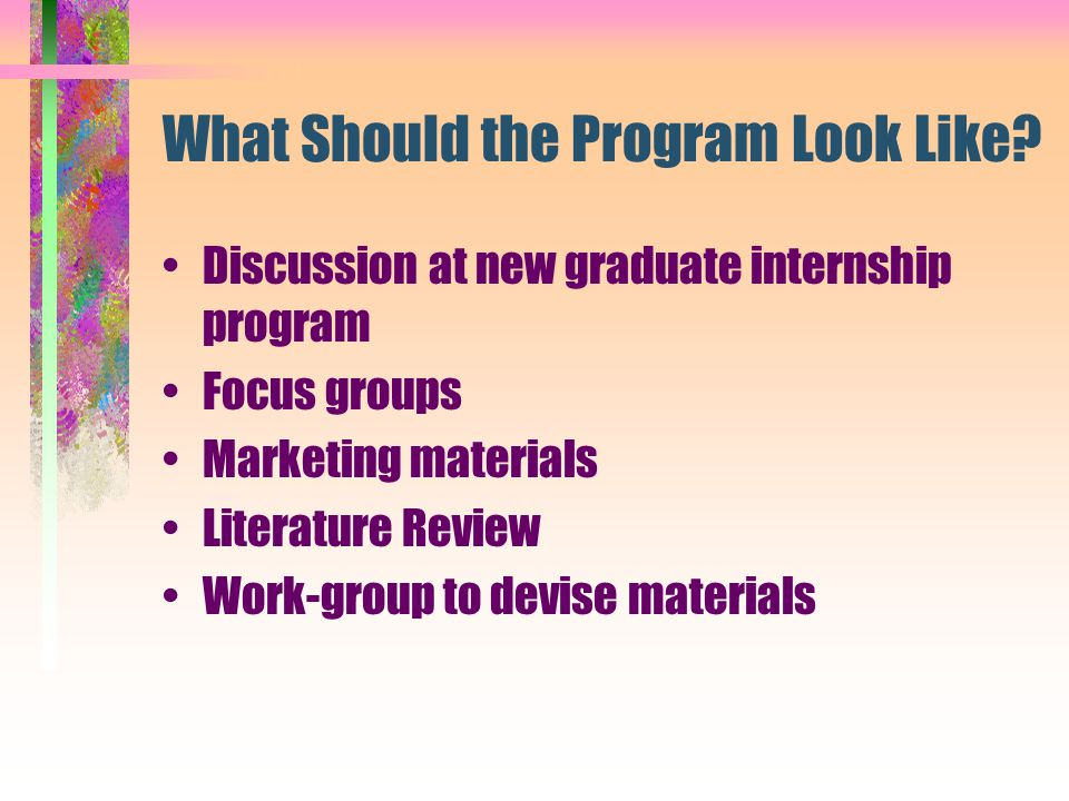 What Should the Program Look Like