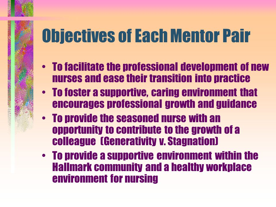 Objectives of Each Mentor Pair