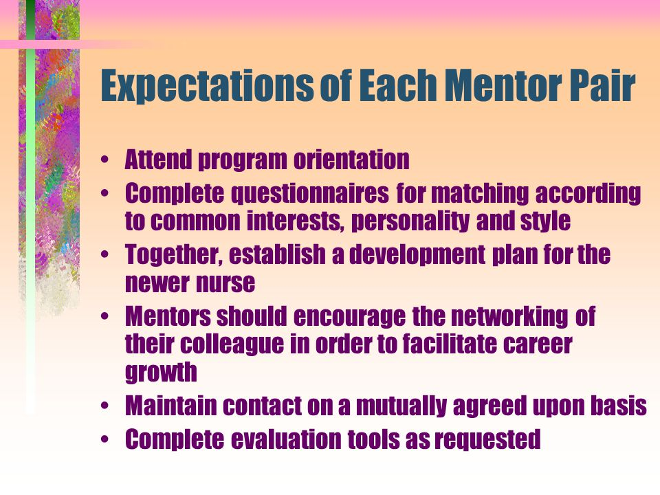 Expectations of Each Mentor Pair