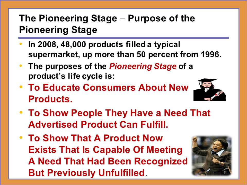 The Pioneering Stage – Purpose of the Pioneering Stage