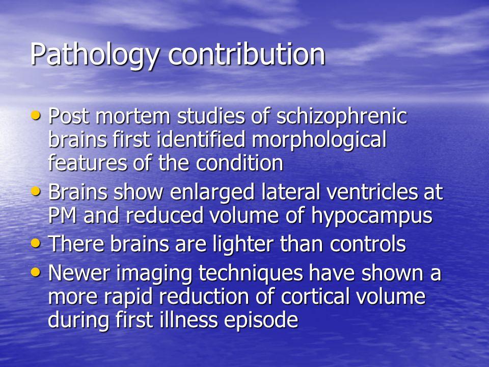 Pathology contribution