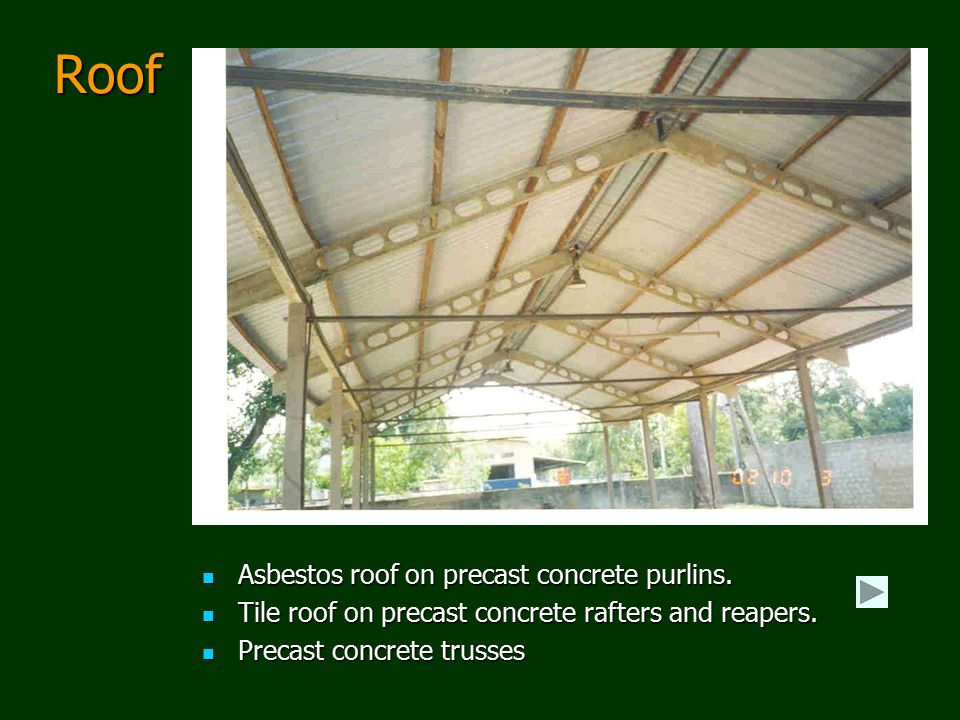 Roof Asbestos roof on precast concrete purlins.