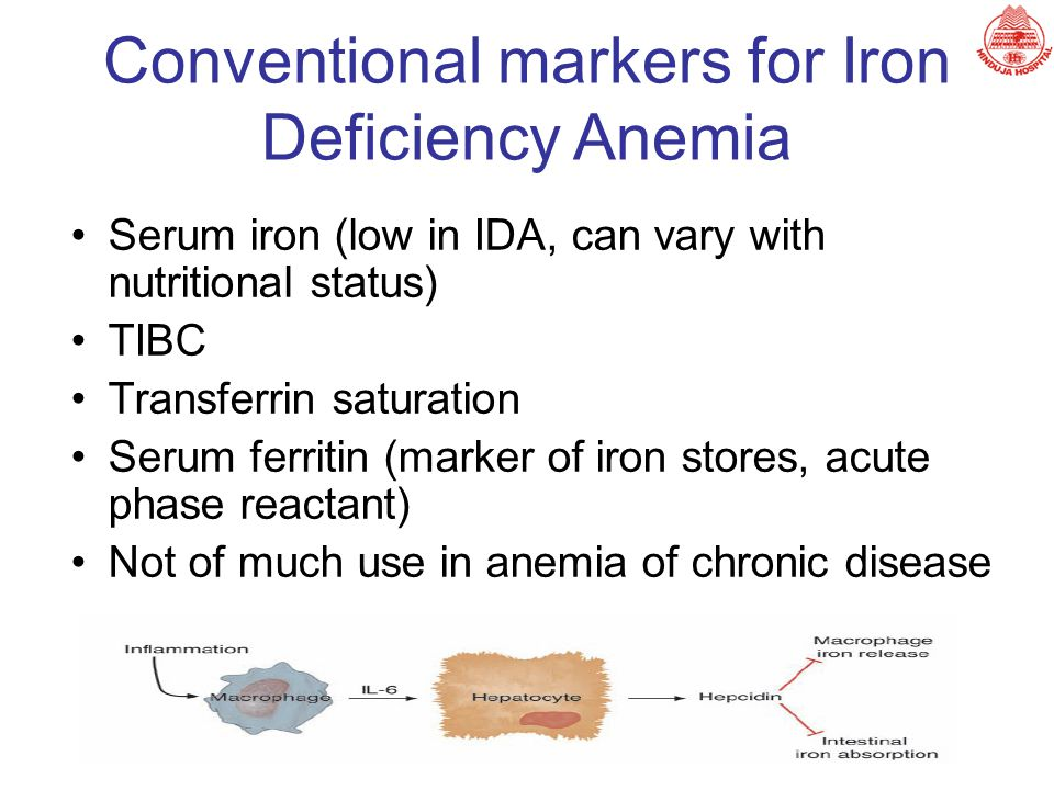 Conventional markers for Iron Deficiency Anemia