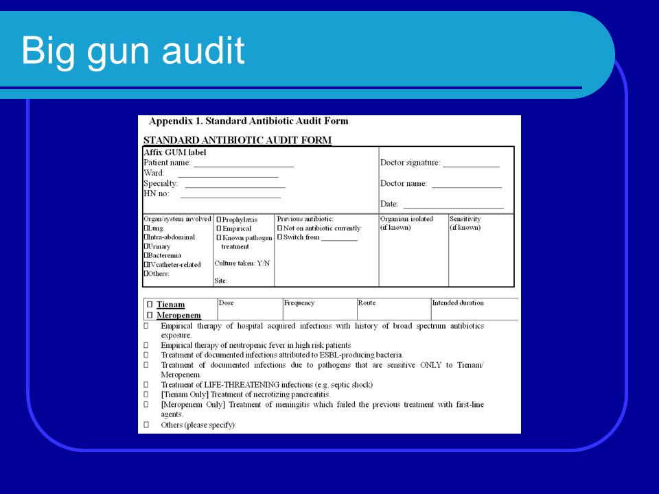 Big gun audit
