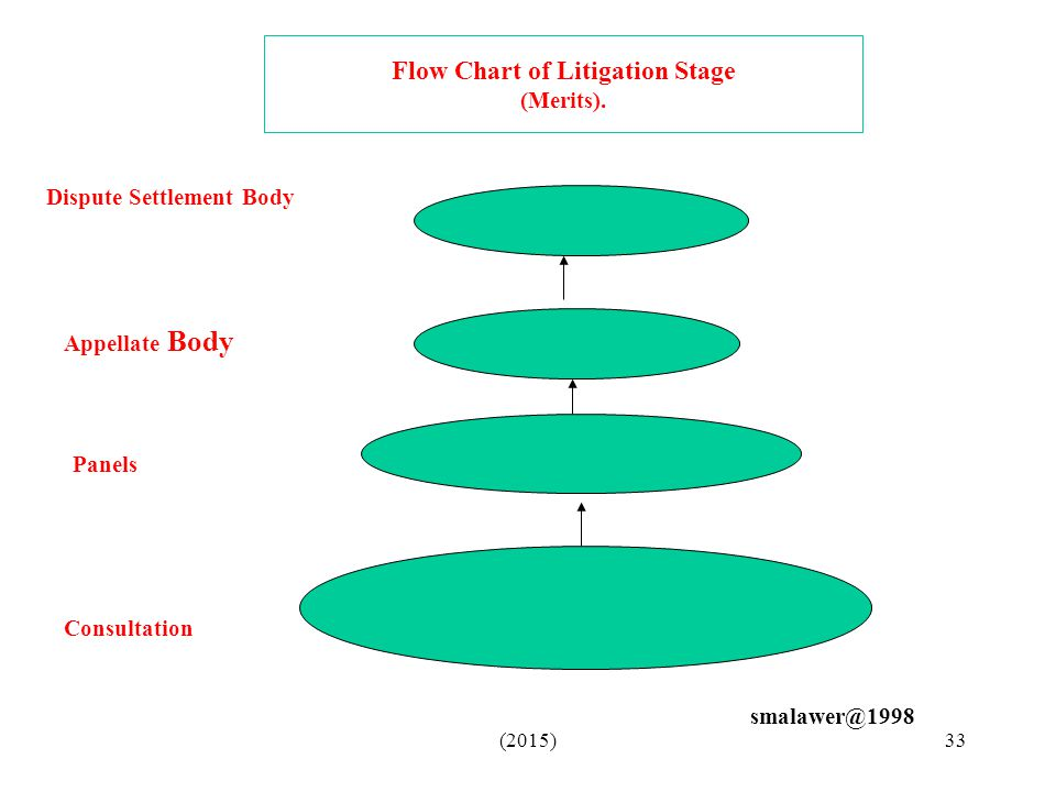 Flow Chart of Litigation Stage (Merits).
