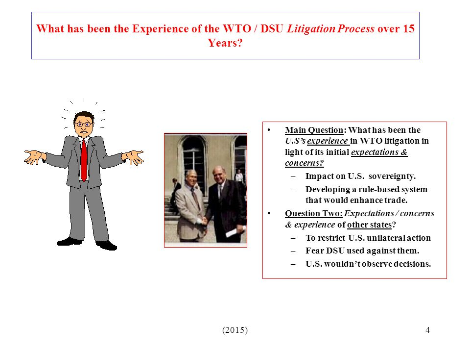 What has been the Experience of the WTO / DSU Litigation Process over 15 Years