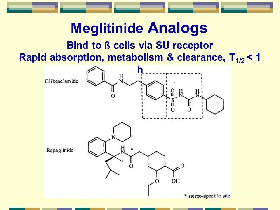 Meglitinide Analogs Bind to ß cells via SU receptor
