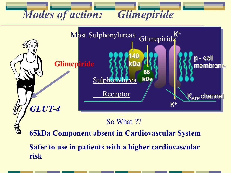 Modes of action: Glimepiride