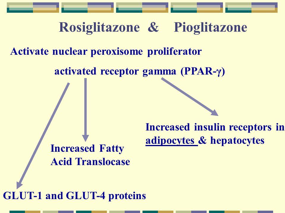 Rosiglitazone & Pioglitazone