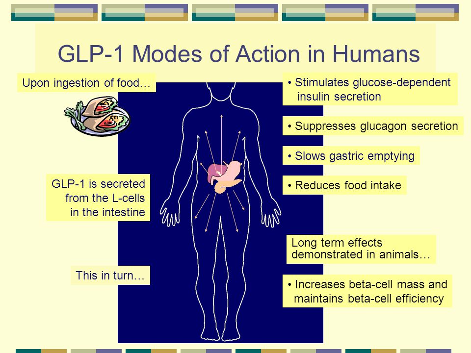 GLP-1 Modes of Action in Humans