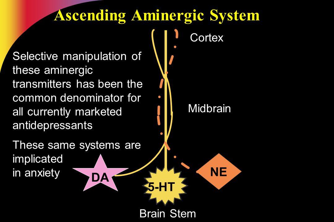 Ascending Aminergic System