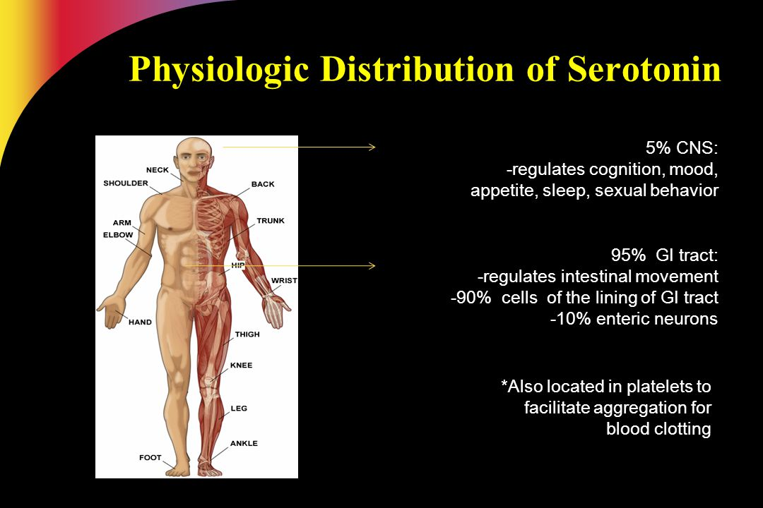 Physiologic Distribution of Serotonin