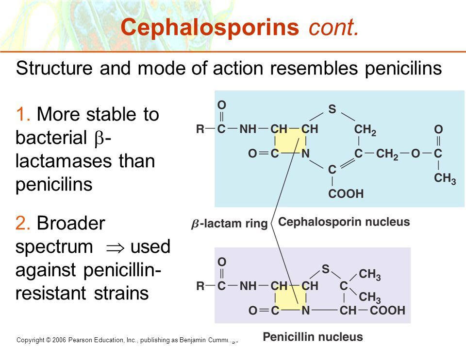 Cephalosporins cont. Structure and mode of action resembles penicilins