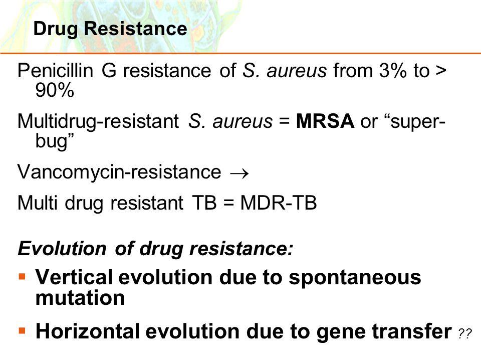 Vertical evolution due to spontaneous mutation