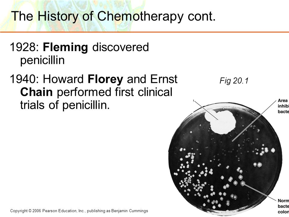 The History of Chemotherapy cont.