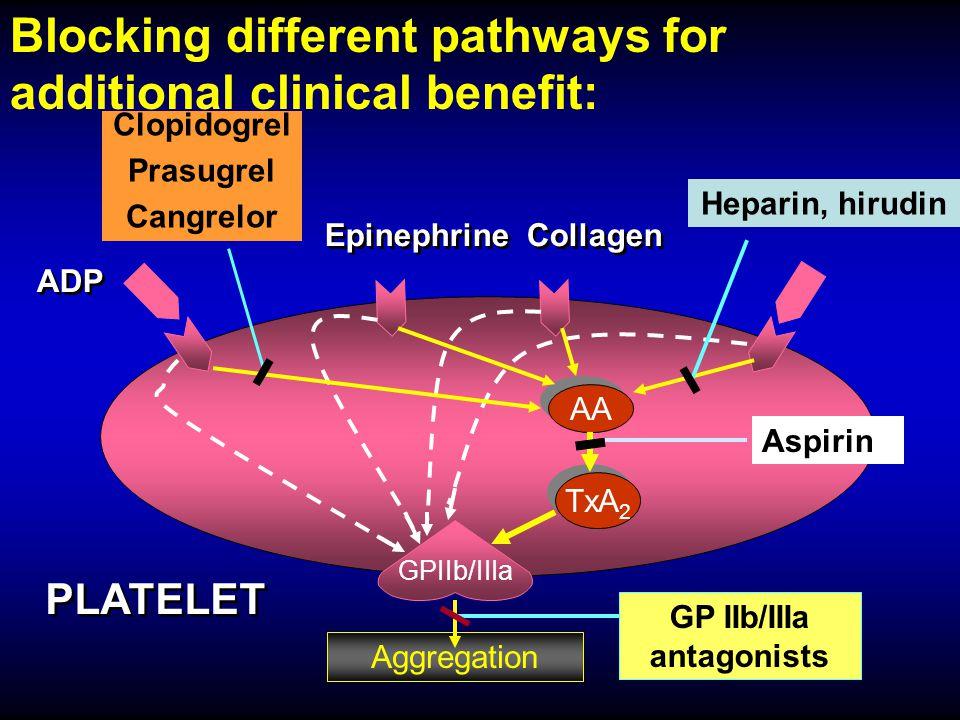 GP IIb/IIIa antagonists