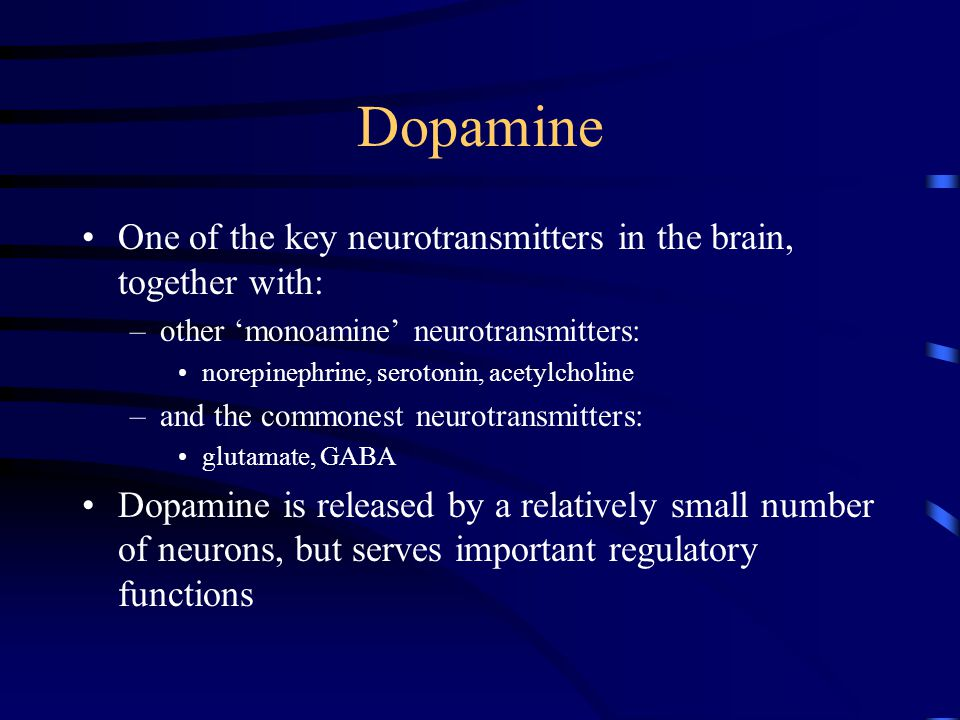 Dopamine One of the key neurotransmitters in the brain, together with: