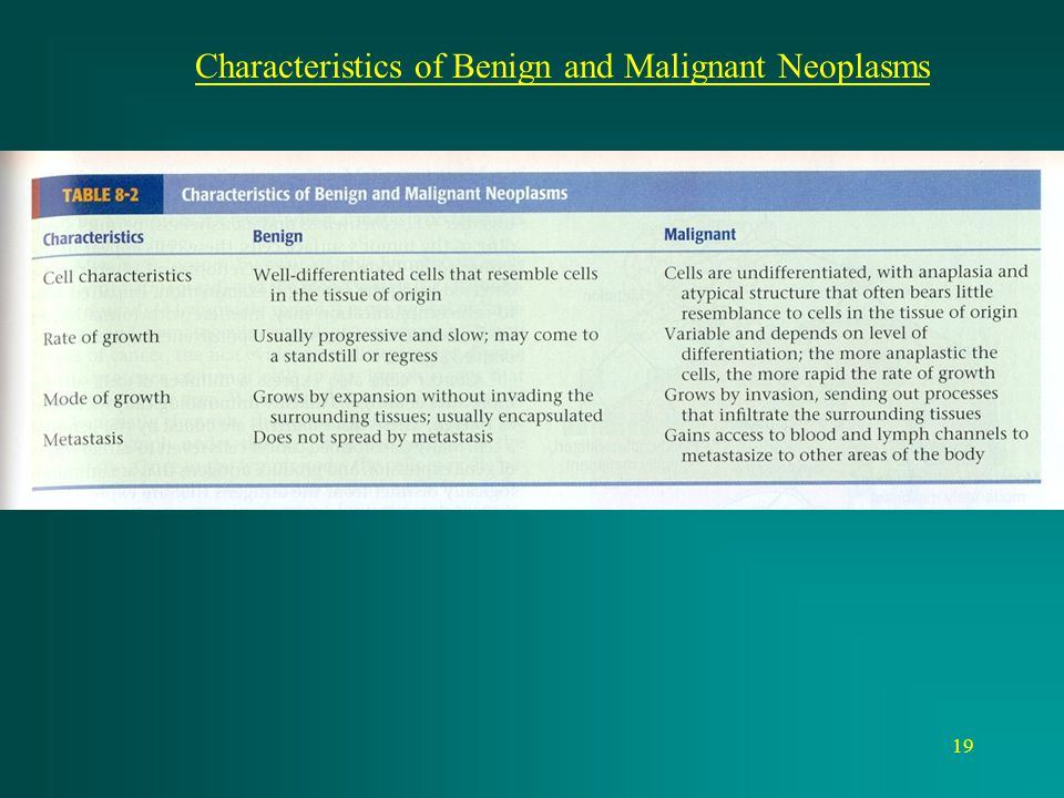 Characteristics of Benign and Malignant Neoplasms