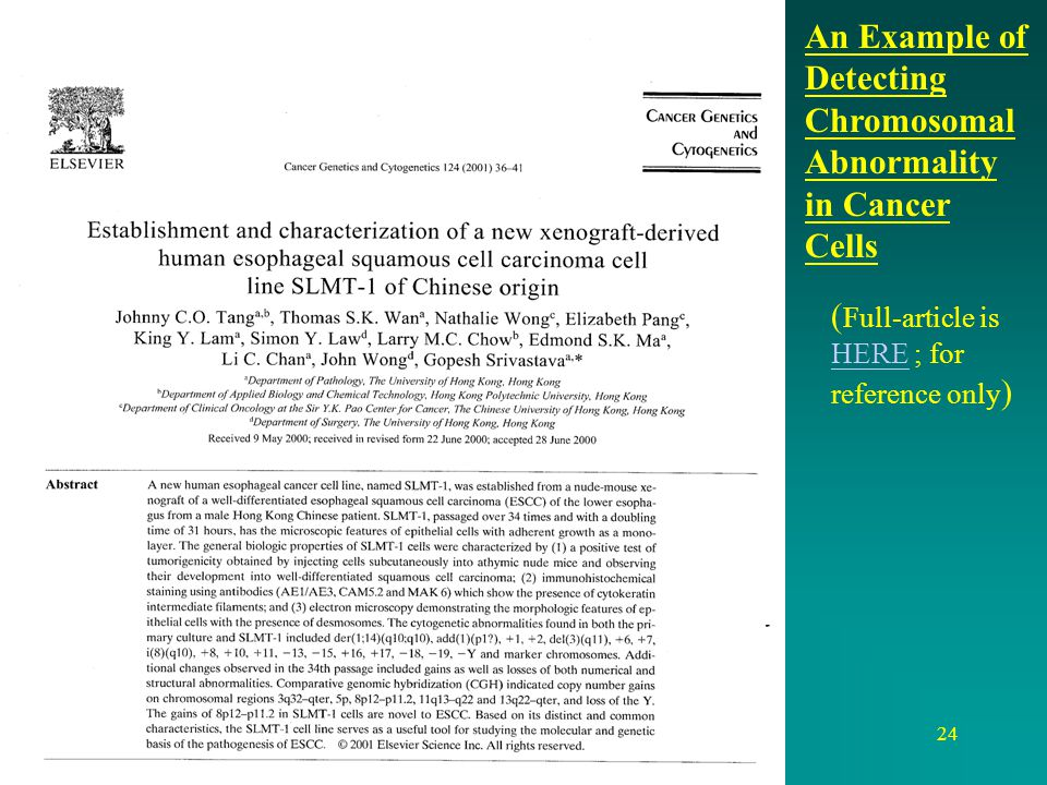 An Example of Detecting Chromosomal Abnormality in Cancer Cells