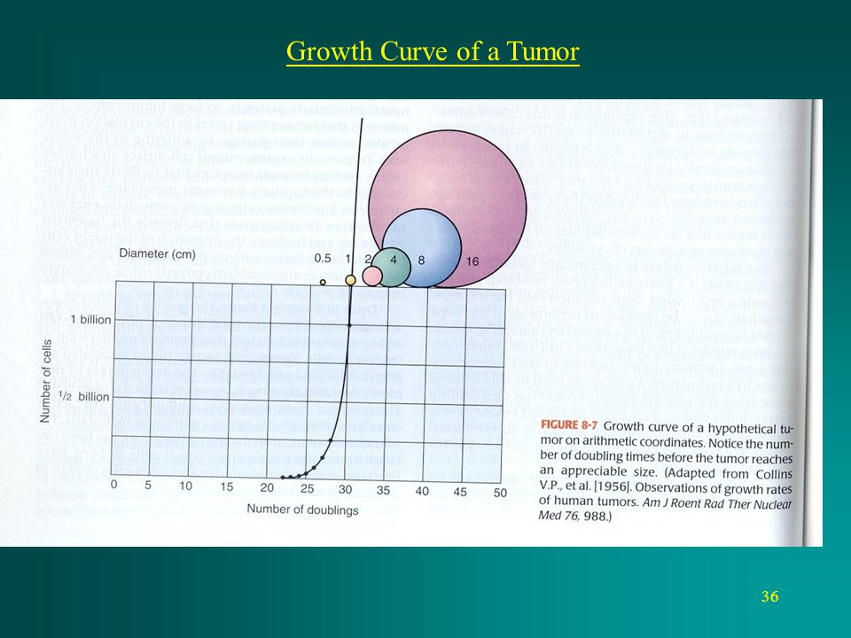Growth Curve of a Tumor