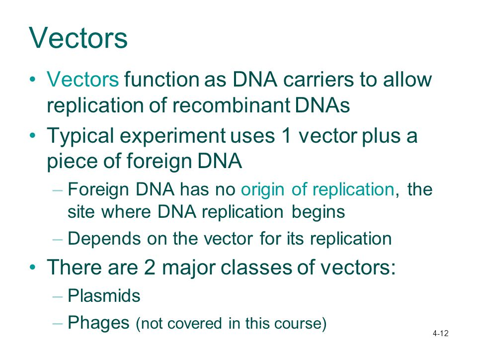 Vectors Vectors function as DNA carriers to allow replication of recombinant DNAs. Typical experiment uses 1 vector plus a piece of foreign DNA.