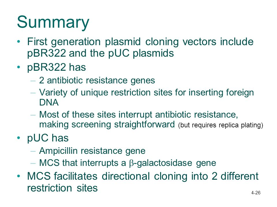 Summary First generation plasmid cloning vectors include pBR322 and the pUC plasmids. pBR322 has. 2 antibiotic resistance genes.