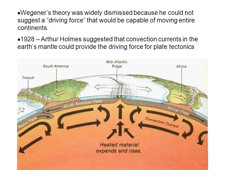 Wegener's theory was widely dismissed because he could not suggest a driving force that would be capable of moving entire continents.