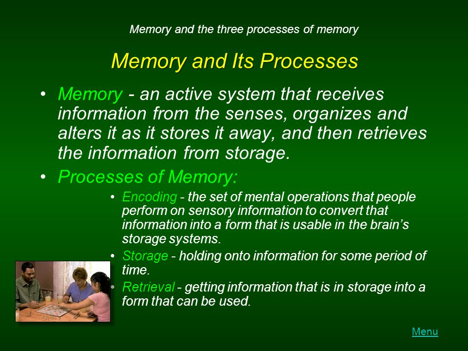 Memory and Its Processes