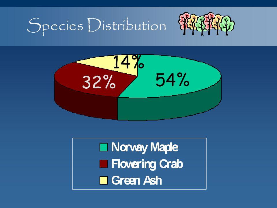 Species Distribution 14% 54% 32%