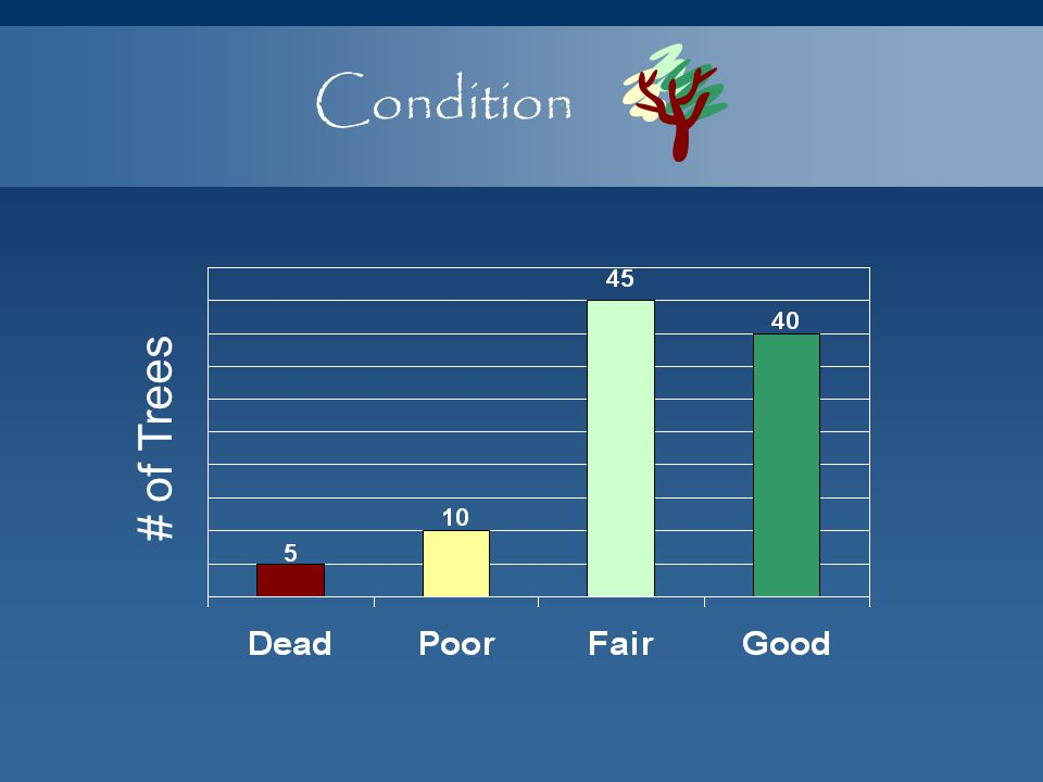 Condition # of Trees