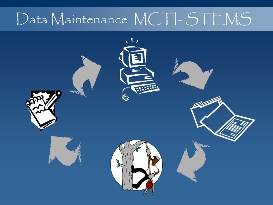 Data Maintenance MCTI- STEMS