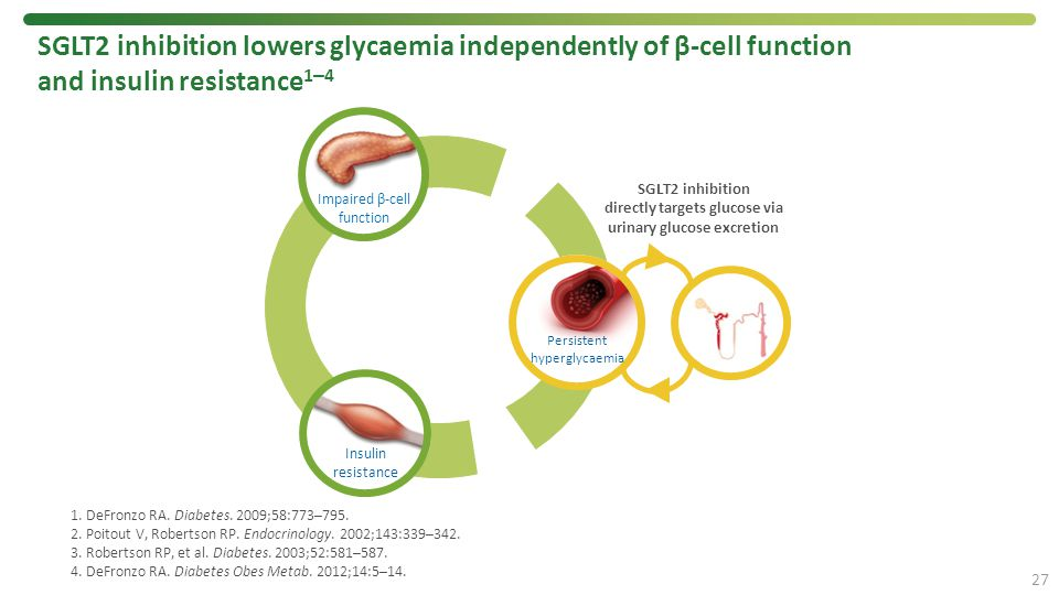 SGLT2 inhibition lowers glycaemia independently of β-cell function and insulin resistance1–4