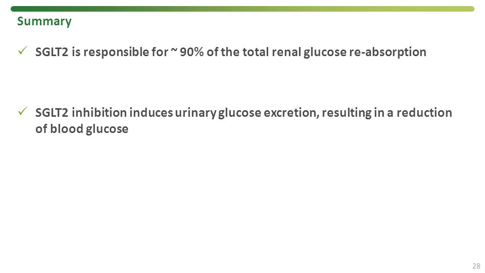 Summary SGLT2 is responsible for ~ 90% of the total renal glucose re-absorption.