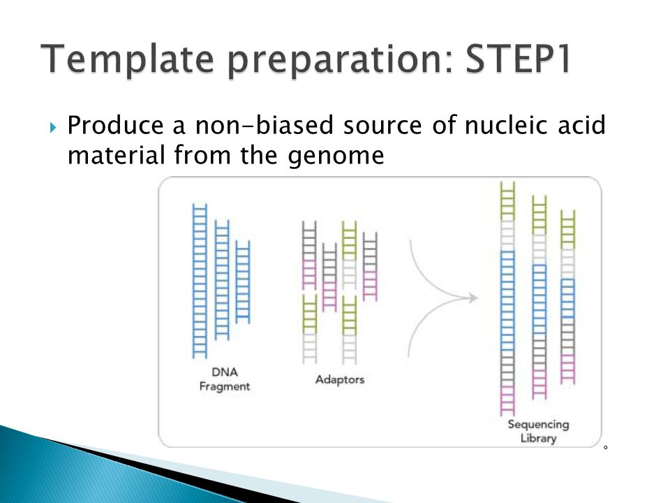 Template preparation: STEP1
