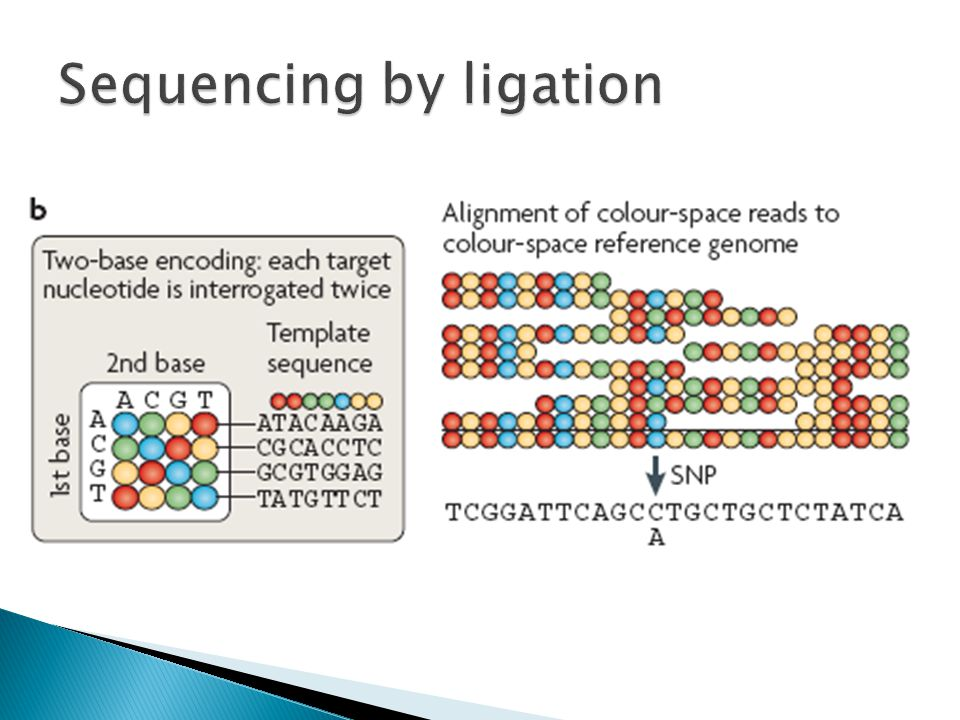 Sequencing by ligation