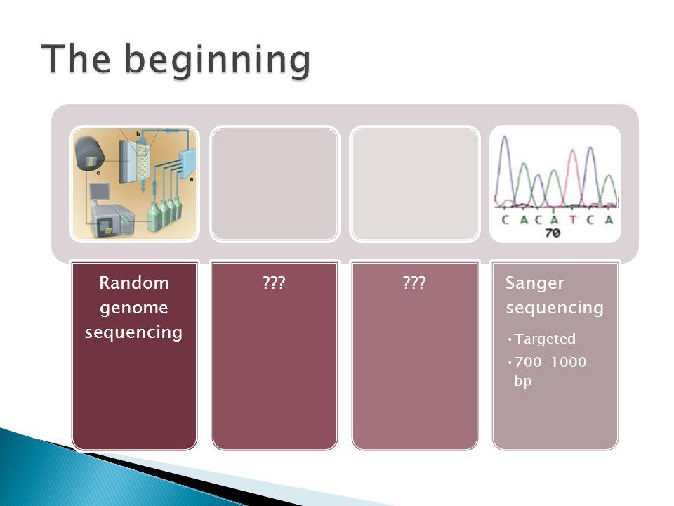 Random genome sequencing