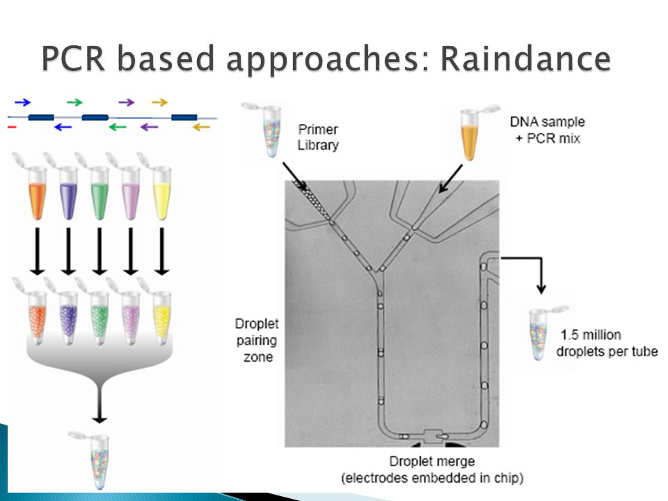 PCR based approaches: Raindance