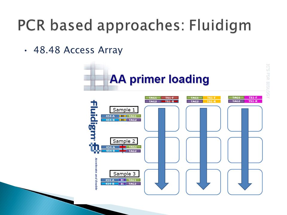 PCR based approaches: Fluidigm