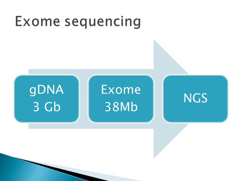 Exome sequencing gDNA 3 Gb Exome 38Mb NGS