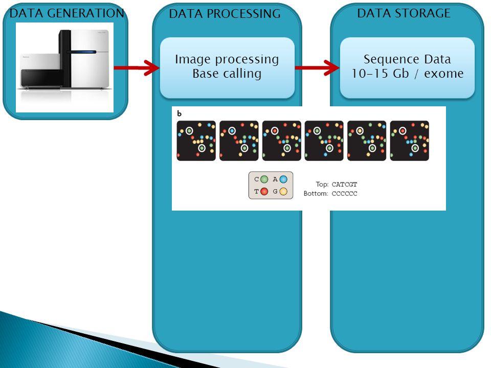 DATA GENERATION DATA PROCESSING. DATA STORAGE. Image processing.