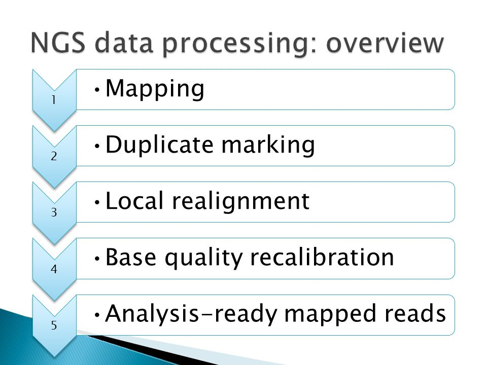 NGS data processing: overview
