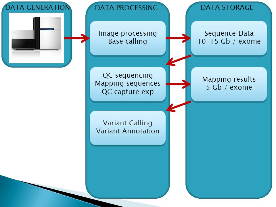 DATA GENERATION DATA PROCESSING. DATA STORAGE. Image processing. Base calling. Sequence Data. 10-15 Gb / exome.